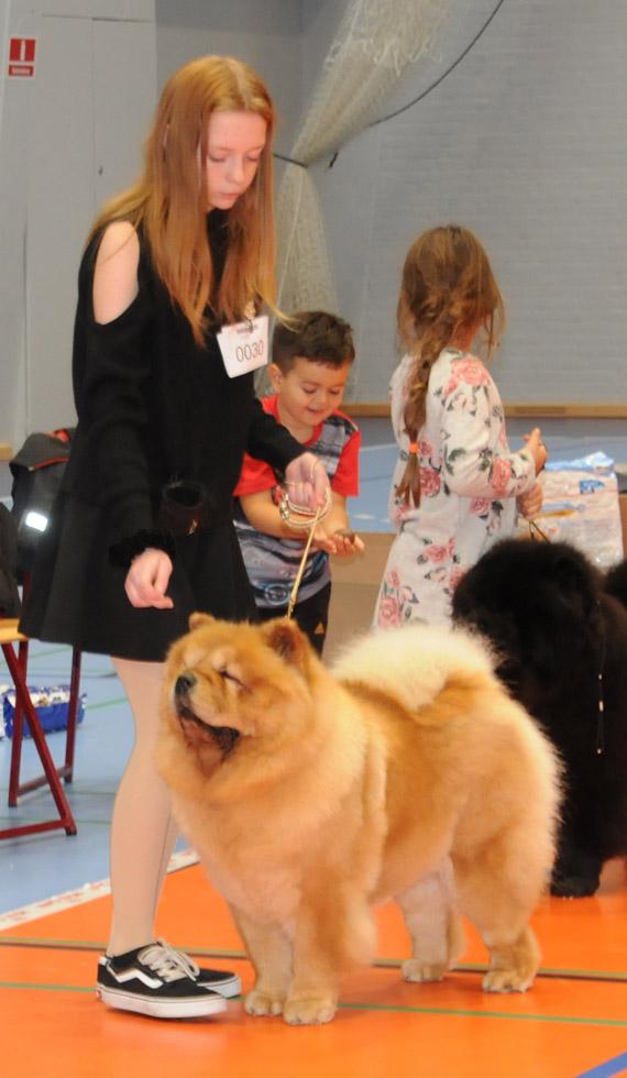 Louise og Bella i konkurrencen om Bedste Tæve